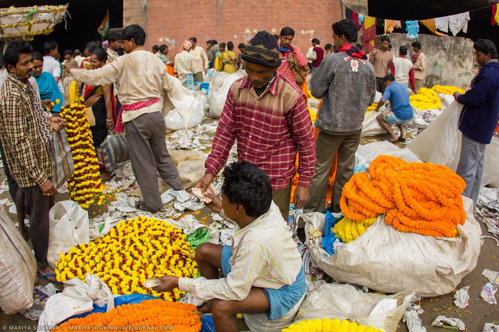 Mariya Sogrina Calcutta Flower Market-10