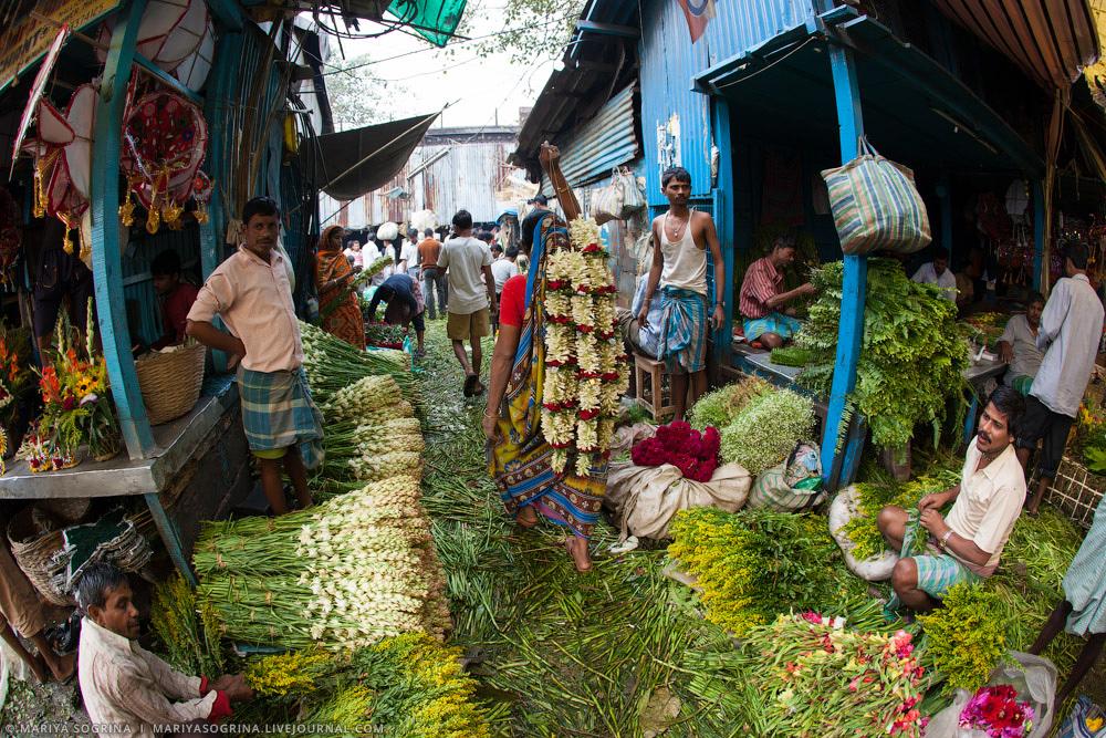 Mariya Sogrina Calcutta Flower Market-12