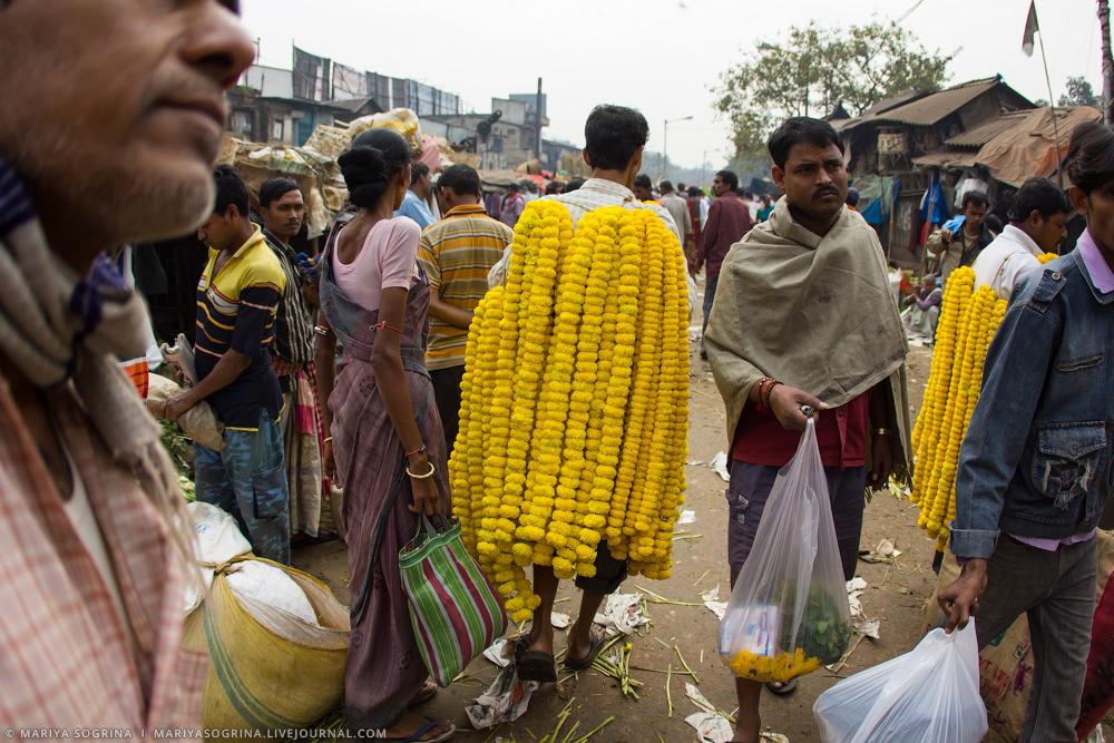 Mariya Sogrina Calcutta Flower Market-16