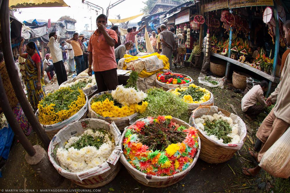 Mariya Sogrina Calcutta Flower Market-17