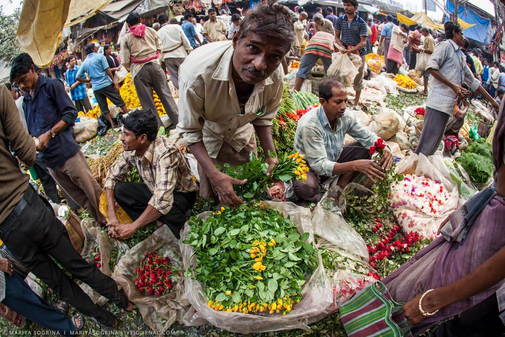 Mariya Sogrina Calcutta Flower Market-19