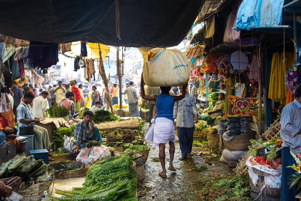 Mariya Sogrina Calcutta Flower Market-20