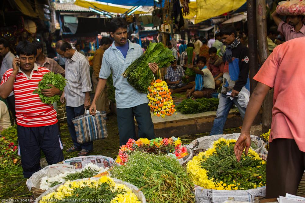Mariya Sogrina Calcutta Flower Market-21