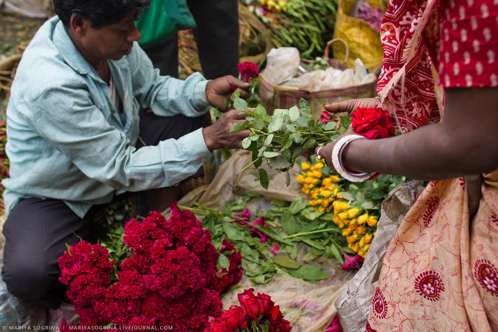 Mariya Sogrina Calcutta Flower Market-25