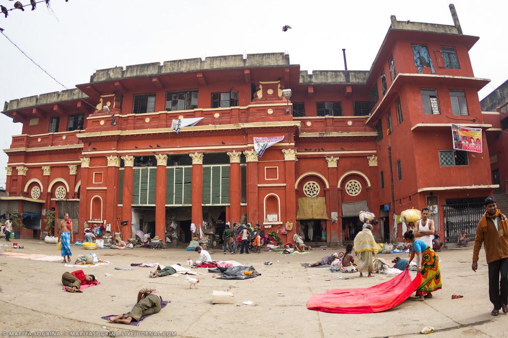 Mariya Sogrina Calcutta Flower Market-26