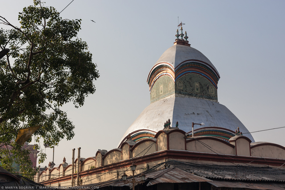 Mariya Sogrina Kali Ghat Kolkata India-16