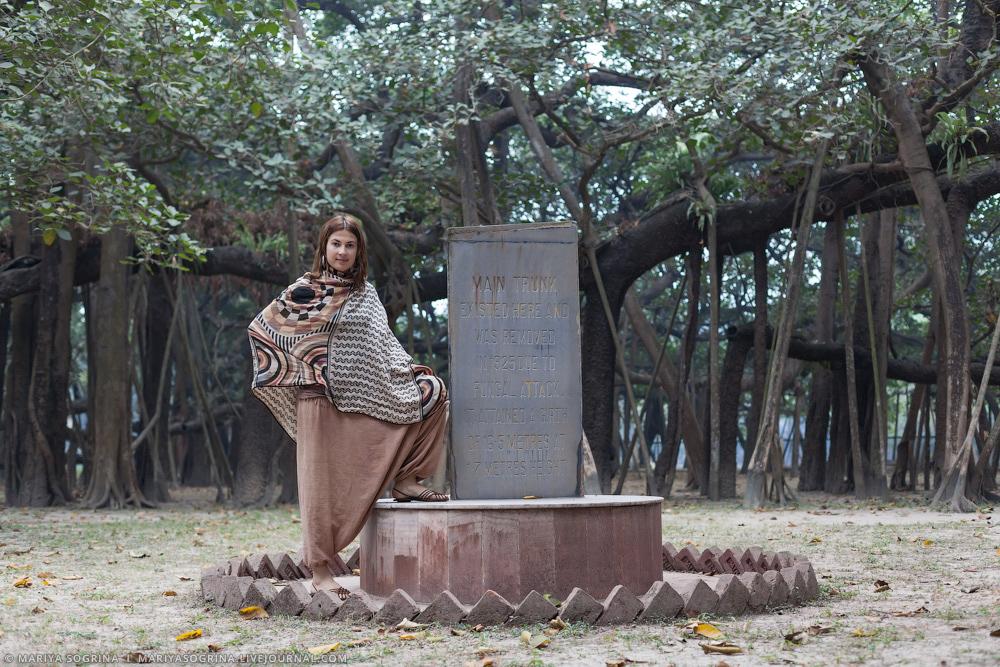 Mariya Sogrina Kolkata Great Banyan-7