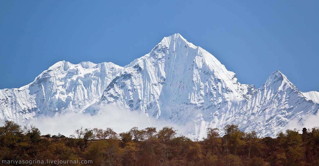 Гималайский пломбир (: