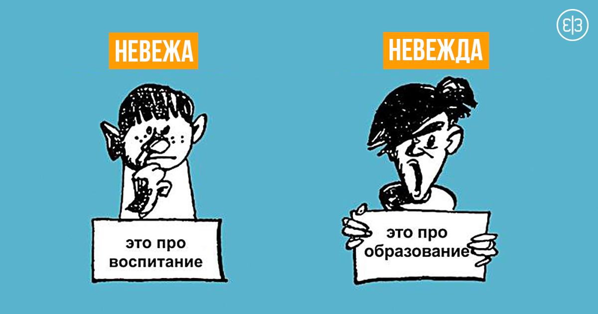 Картинка: https://zen.yandex.ru/media/id/5c030bddbf4b0f0417823603/nevejda-ili-neveja-kak-pravilno-5c05b6de5e1f090450a7629d