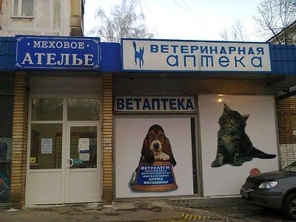 вывеска ржака ветеринарка меховой салон ателье животные кошки собаки маркетолухи