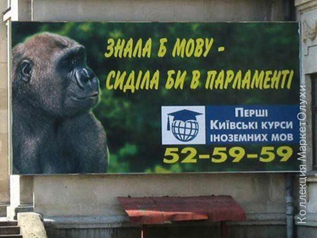 вирус украина парламент курсы языков