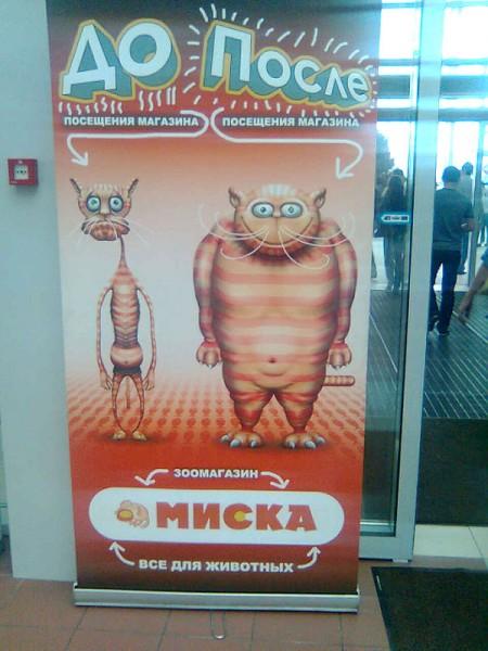 баннер корма животных миска ржака
