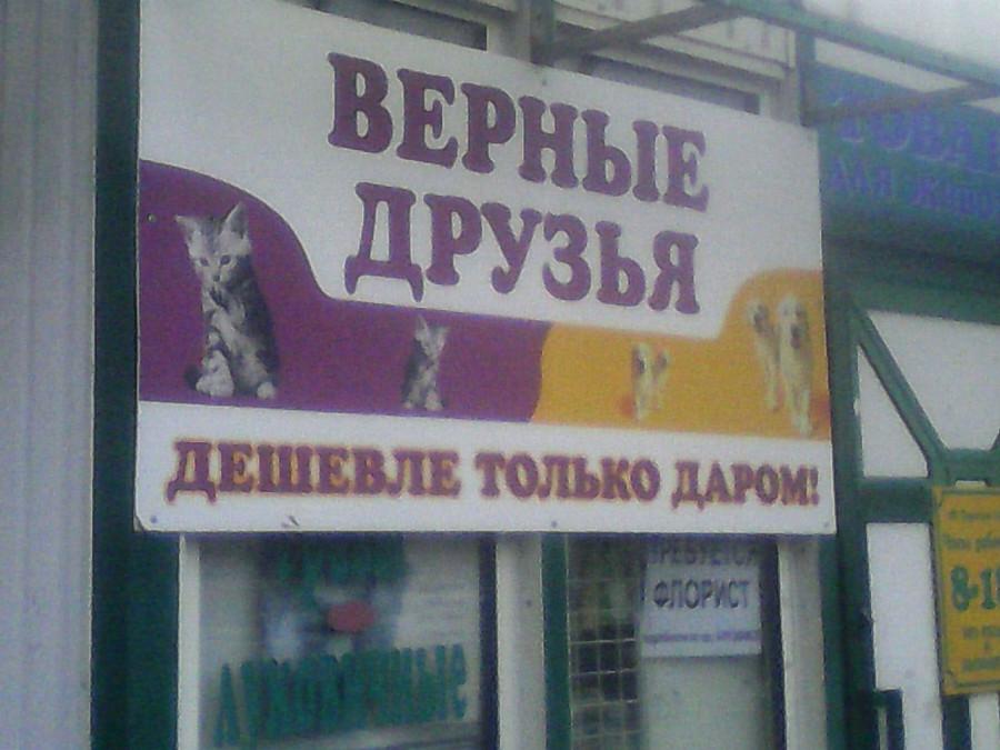 верные друзья дешевле только даром плакат слоган ржака