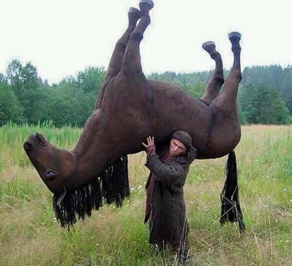 ... в поле с конем...: