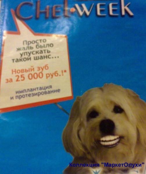 модуль медицина стоматология собака бред маркетолухи