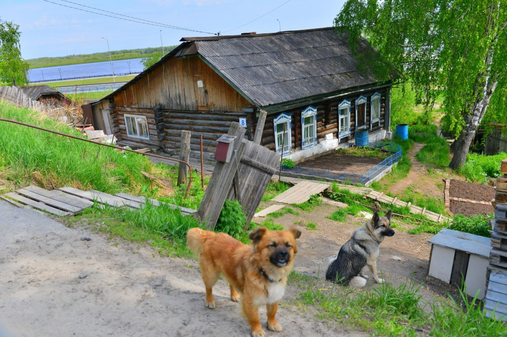 Домик в деревне Ханты-Мансийске Маркосян Усик_2910x1940