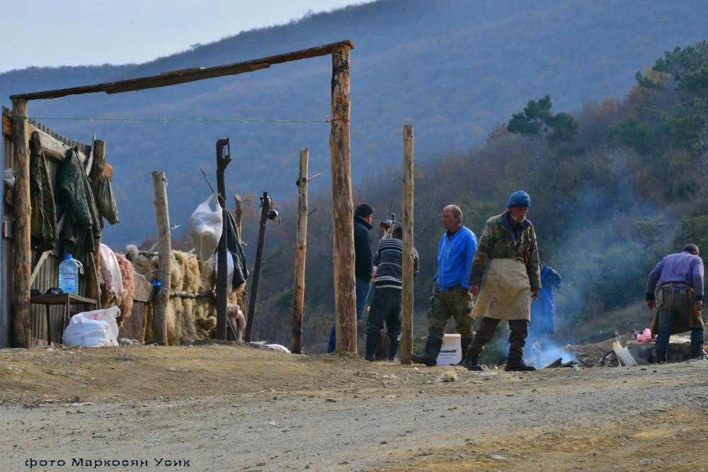 Процедура колоть овец, явно была их пожизненным промыслом