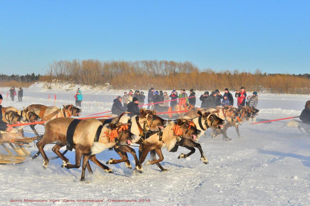 -фото Маркосян Усик Саранпауль, День Оленевода 2016