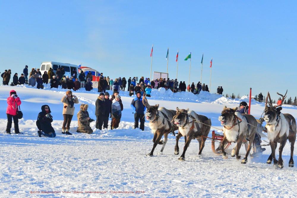фото Маркосян Усик Саранпауль, День Оленевода 2016 ....