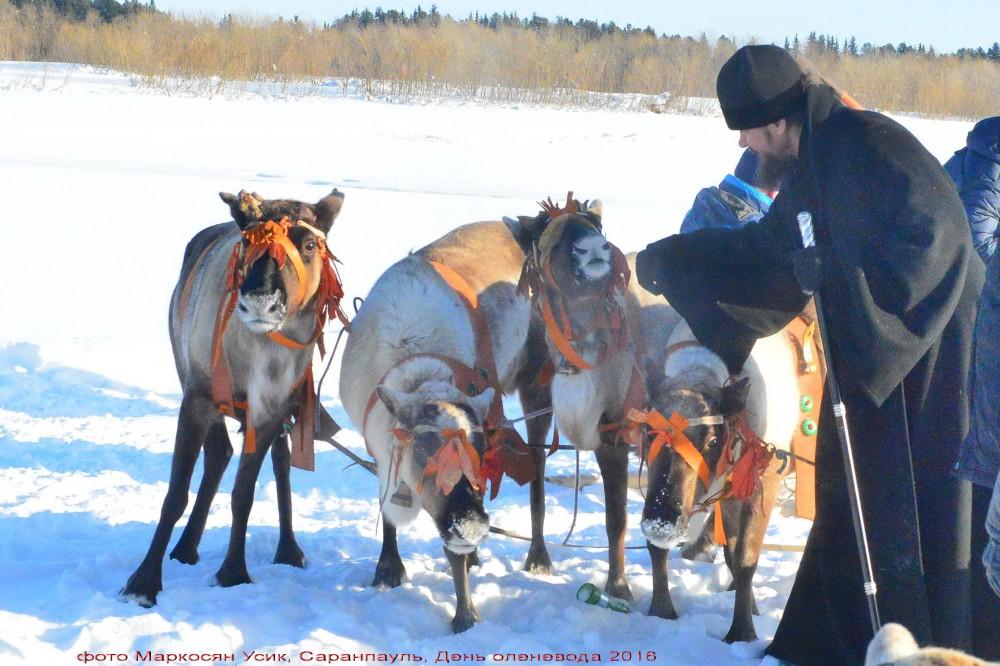фото Маркосян Усик, Саранпауль, День оленевода 2016,-