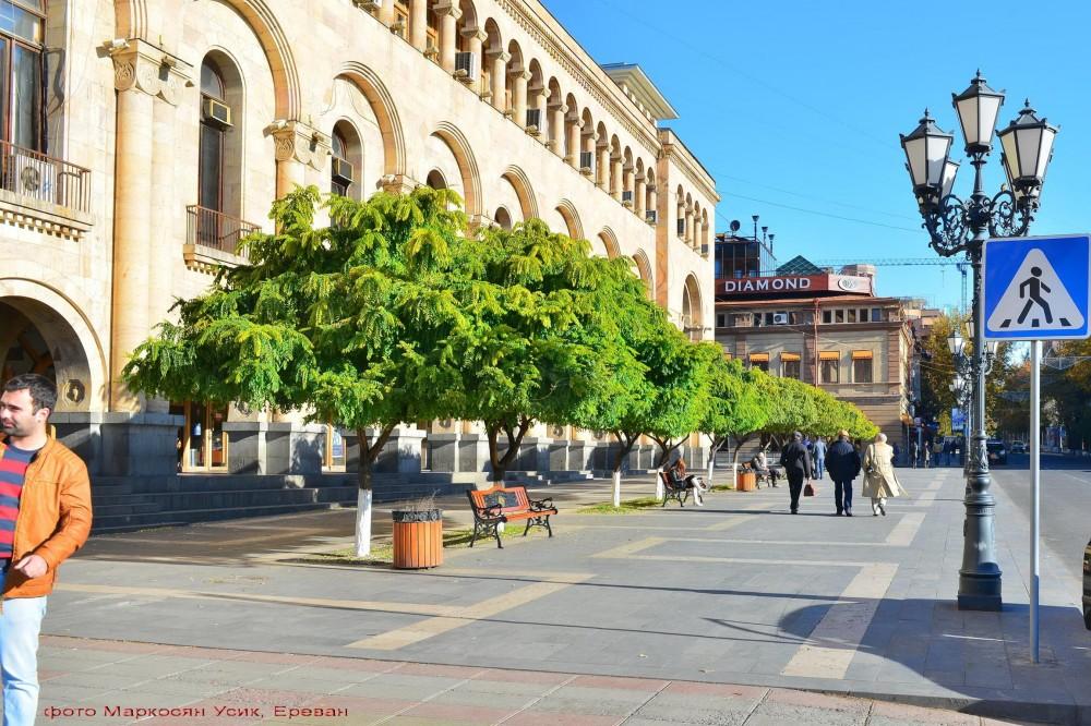 Фото Маркосян Усик, Ереван деревца в главном площадь