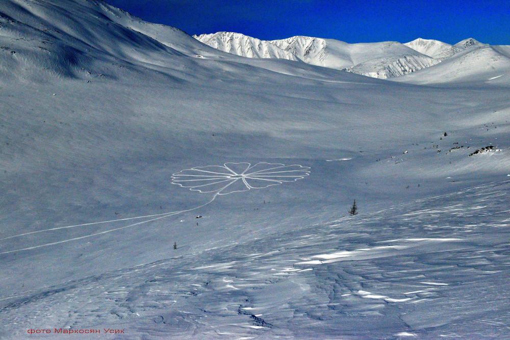 Цветок на снегу Маркосяна Усика