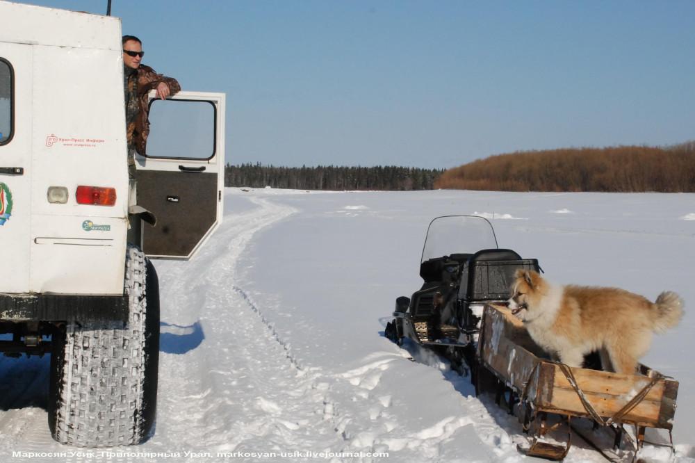 Фото, Маркосян Усик, Трэкол, Приполярный Урал ,,юЮ