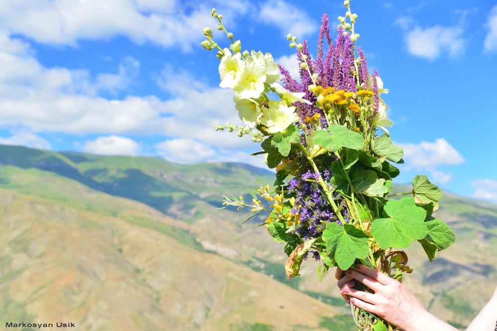 Маркосян Усик Горные цветы Армении,.