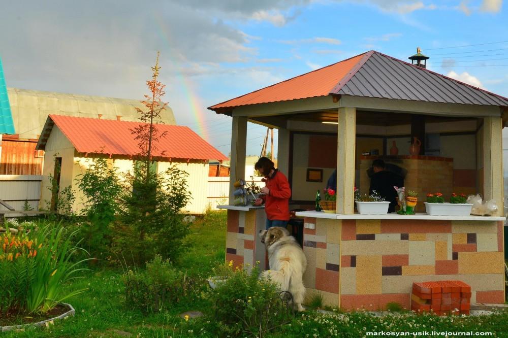Собака Босс, фото Маркосян Усик-=