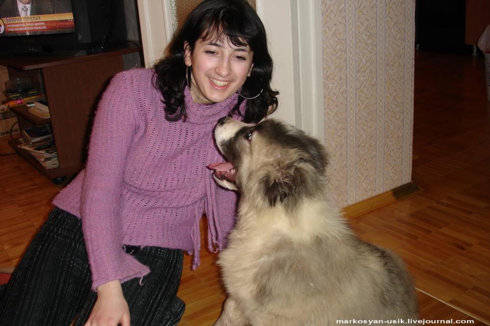 .-Собака Босс, фото Маркосян Усик
