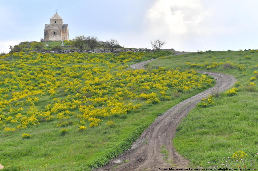 Весенняя Армения, Усик Маркосян, Հուսիկ Մարկօսյան,- (2)