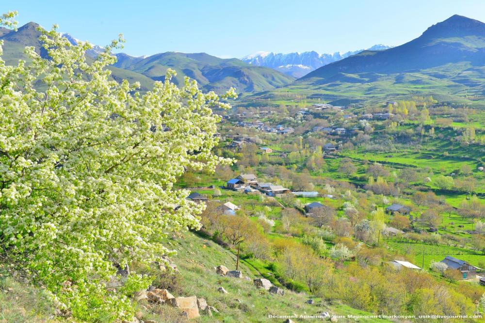 Весенняя Армения, Усик Маркосян, Հուսիկ Մարկօսյան,,,