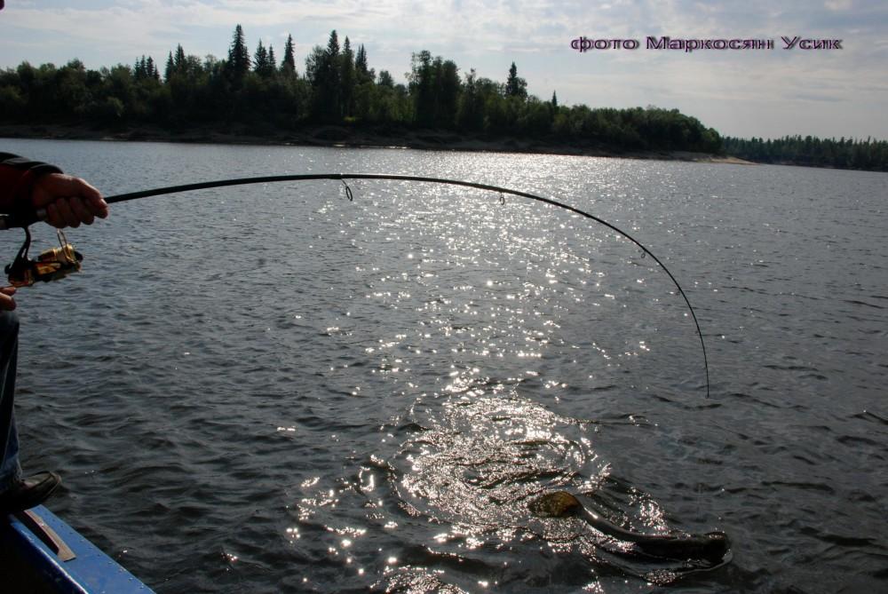 рыбалка саранпауль видео