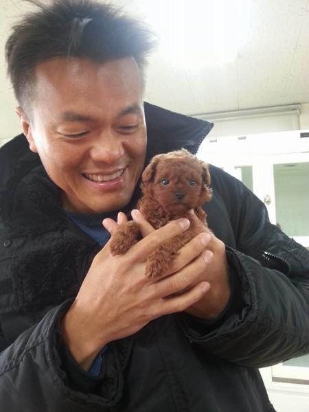 jyp-puppy