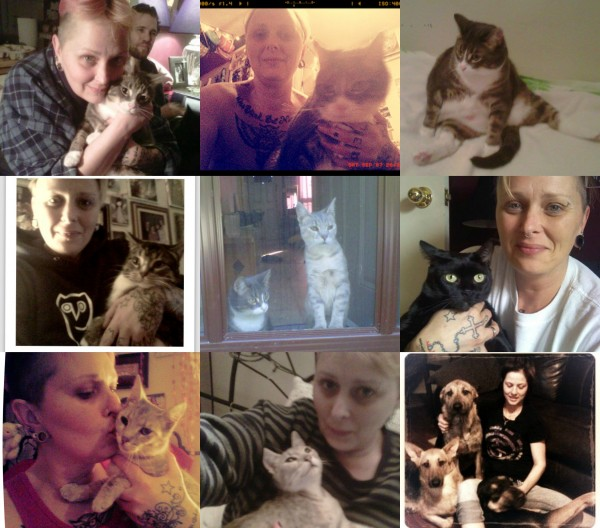 furbaby collage