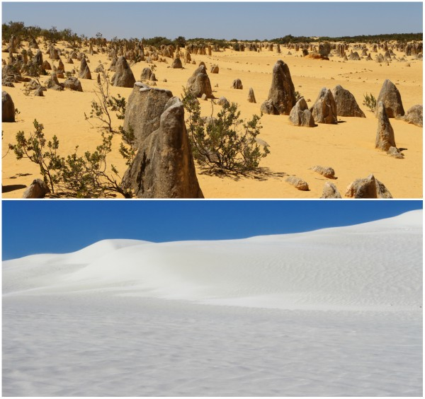 Pinnacles & Nambung