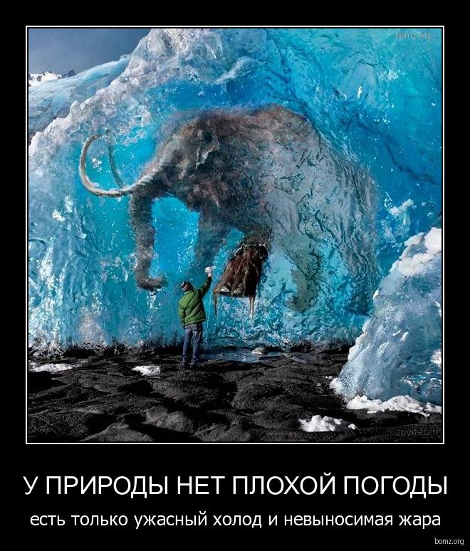 704555-2011_05_15-10_22_10-bomz_org-demotivator_u_prirodiy_net_plohoyi_pogodiy_est_tolko_ujasniyyi_holod_i_neviynosimaya_jara
