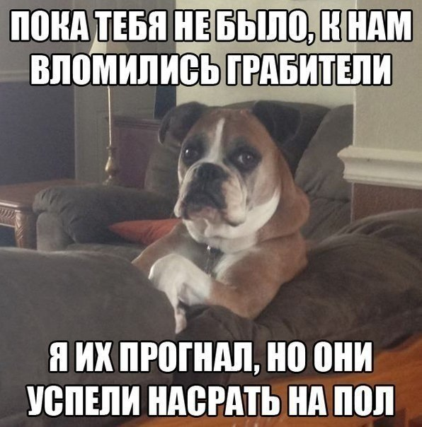 sSAhvI117oc