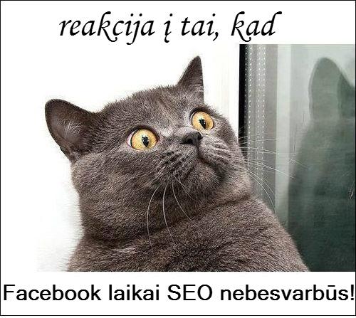facebook-laikai-nesvarbus