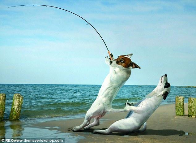 забавный рассказ на рыбалки
