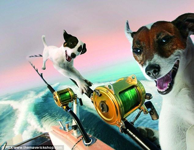 какая собака для рыбалки