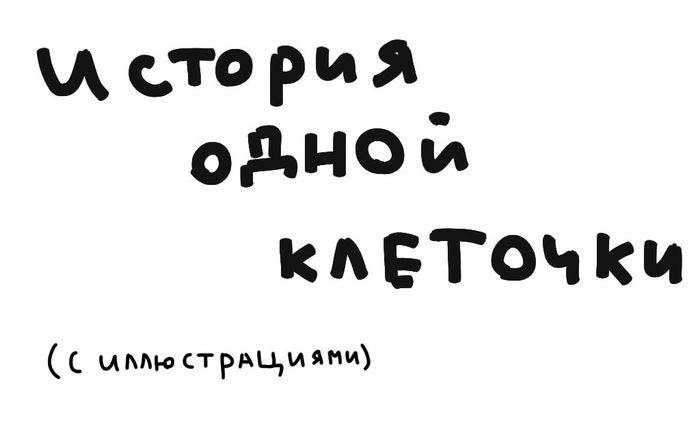 kletka_01