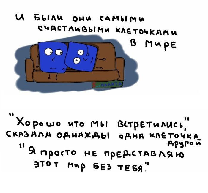 kletka_09