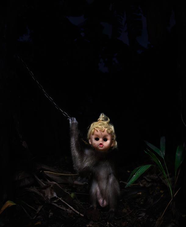 monkey17