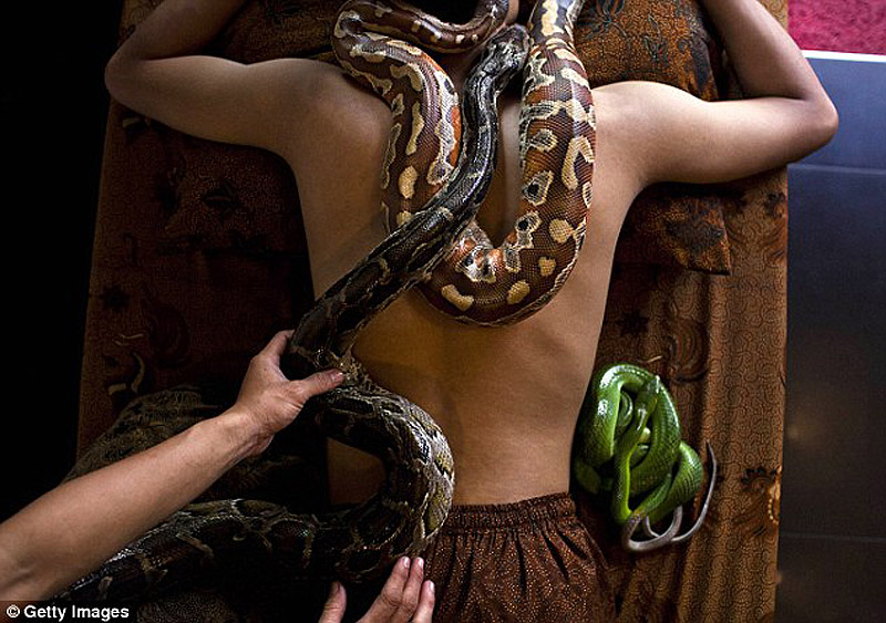 snakemassage02