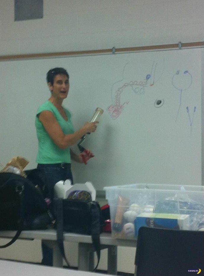 Секс уроки в школе