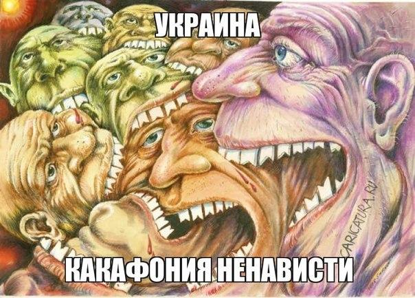 ООН: В ходе конфликта на Донбассе погибли 2905 человек, 7640 - ранены - Цензор.НЕТ 6737