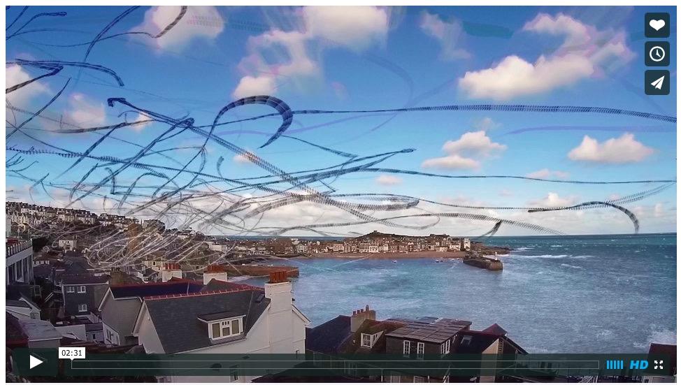 Завораживающее таймлапс видео траекторий полета птиц