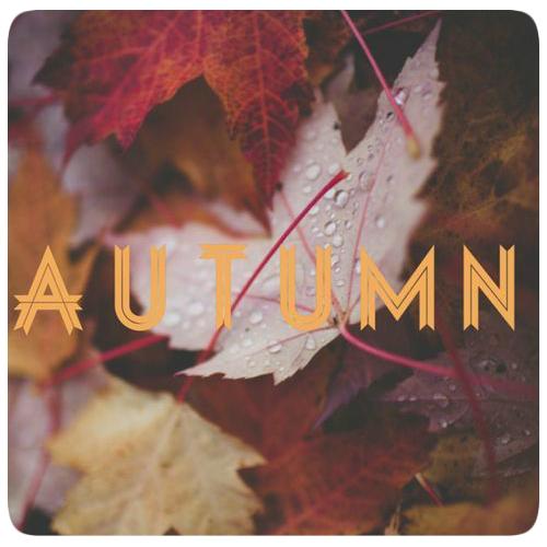 уют осень картинки