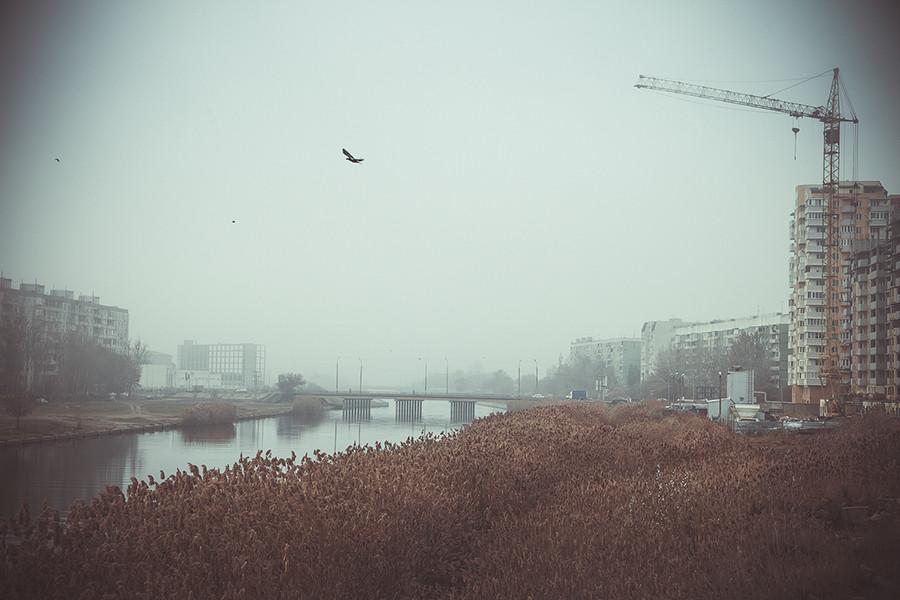 туман утро река камыши стройка птица